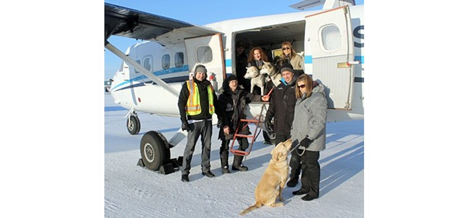 Paws on a Plane - Summit Transports SPCA Dogs | Summit Air